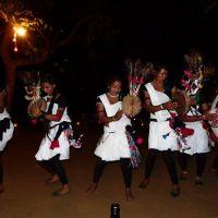 tharu dancing show