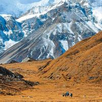 Kanchenjunga Trek - Top 3 - Three diamond adventure