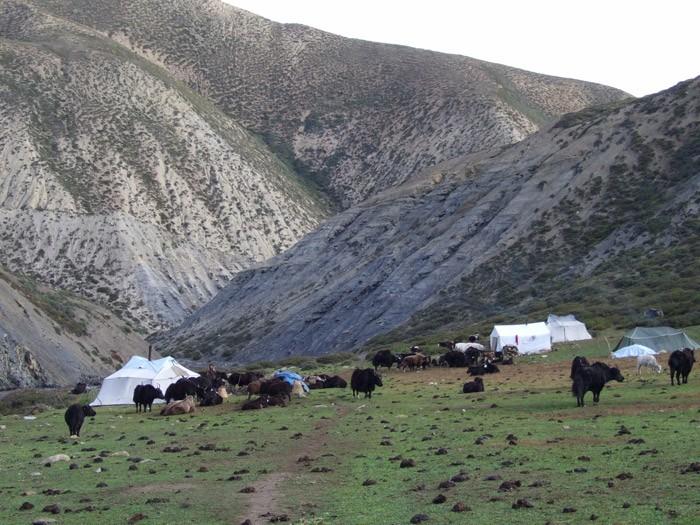 upper-dolpo-trek 24 days